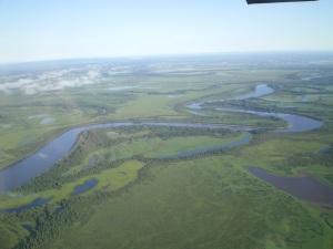 Alaska summer landscape