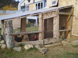 Yes, that's a chicken coop in Grayling; right next to the school.