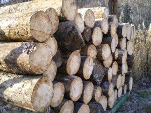 spruce load???