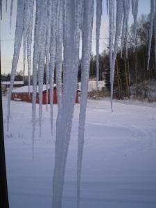 November Snow 008