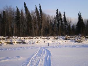 November Snow 027