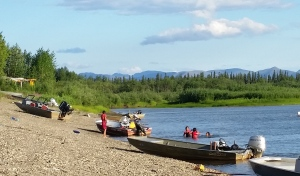 Kids and even adults going for a swim in the Kobuk (10:15 pm).